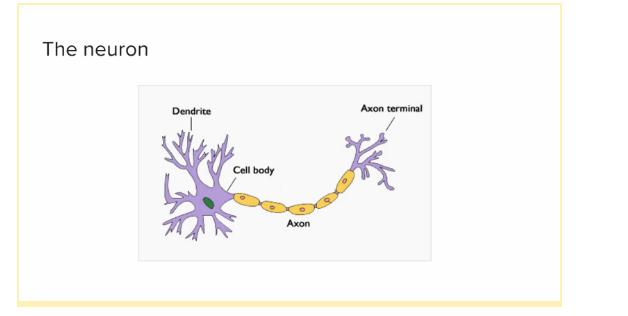 Что такое линейная классификация и как она относится к нейронным сетям?
